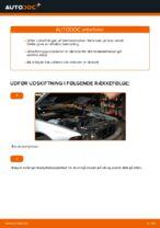 Hvordan man udskifter bremseklodser til skivebremser i for på BMW E39