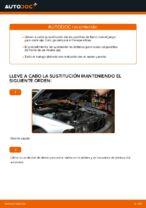PDF manual de reemplazo: Pastilla de freno BMW 5 Berlina (E39) delanteras y traseras