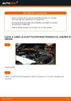 Tutorial paso a paso en PDF sobre el cambio de Correa Poly V en BMW 5 (E39)