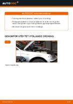 Lär dig hur du fixar Stötdämpare bak BMW problemen
