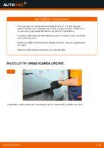 Înlocuire Kit discuri frana spate si față RENAULT cu propriile mâini - online instrucțiuni pdf