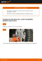 Querlenker wechseln MERCEDES-BENZ M-CLASS: Werkstatthandbuch