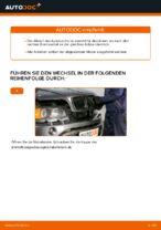 Bremszange hinten + vorne wechseln: Online-Anweisung für BMW X5