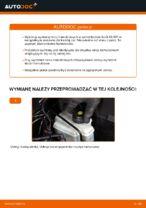 W jaki sposób wymienić tylne tarcze hamulcowe w Audi A3 8P1