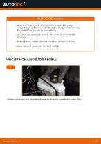 Kā nomainīt Audi A3 8P1 aizmugurējos bremžu diskus