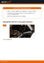 PDF guide för byta: Gasdämpare baklucka AUDI