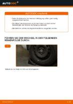 Wie Sie die hintere Aufhängung der Stoßdämpfer am Audi A3 8P1 ersetzen