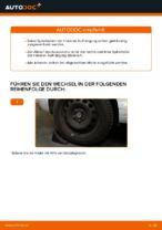 Wie Sie die hinteren Fahrwerksfedern am Audi A3 8P1 ersetzen