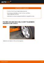 Wie der Austausch von Spurstangenköpfen bei BMW E39 benzin-Autos funktioniert