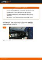 Wie Sie Motoröl und den Ölfilter am BMW E39 benzin ersetzen