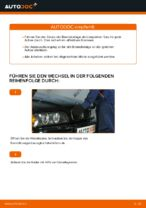 Empfehlungen des Automechanikers zum Wechsel von BMW BMW E39 530d 3.0 Bremssattel