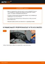 Instrukcja obsługi samochodu KIA pdf