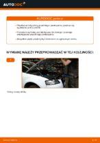 Instrukcja PDF dotycząca obsługi A3