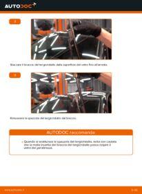Come effettuare una sostituzione di Tergicristalli su 1.9 TDI Golf 5