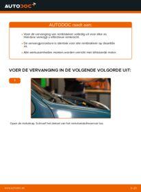 Vervangen: Remblokken D 65 1.9 Renault Kangoo kc01