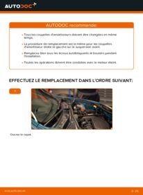 Comment effectuer un remplacement de Coupelle d'Amortisseur sur D 65 1.9 Renault Kangoo kc01