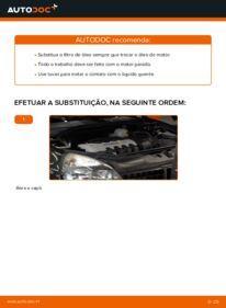 Como realizar a substituição de Filtro de Óleo no 1.2 Renault Clio 2
