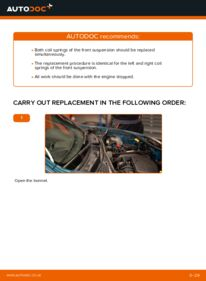 How to carry out replacement: Springs on D 65 1.9 Renault Kangoo kc01