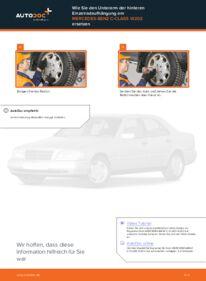 Wie der Wechsel durchführt wird: Querlenker Mercedes W202 C 180 1.8 (202.018) C 250 2.5 Turbo Diesel (202.128) C 220 D 2.2 (202.121) tauschen