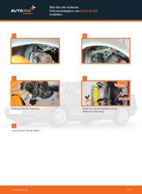 Wie der Wechsel durchführt wird: Federn Audi A4 B5 Limousine 1.6 1.9 TDI 1.8 tauschen