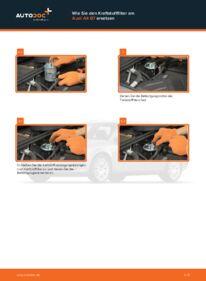 Wie der Wechsel durchführt wird: Kraftstofffilter Audi A4 b7 2.0 TDI 2.0 TDI 16V 1.9 TDI tauschen