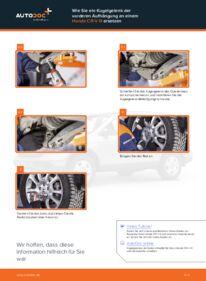 Wie der Wechsel durchführt wird: Traggelenk Honda CR-V III 2.2 i-CTDi 4WD (RE6) 2.0 i 4WD (RE5) 2.2 i-DTEC 4WD (RE6) tauschen