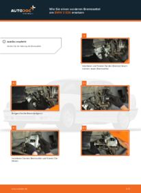 Wie der Wechsel durchführt wird: Bremssattel 316i 1.6 BMW E36 Compact tauschen