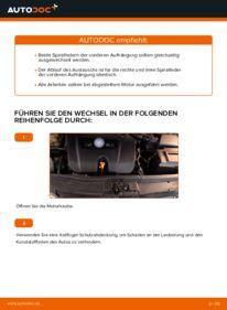 Wie der Wechsel durchführt wird: Federn Golf 4 1.4 16V 1.6 1.6 16V tauschen