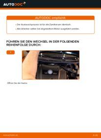 Wie der Wechsel durchführt wird: Zündkerzen Golf 4 1.4 16V 1.6 1.6 16V tauschen