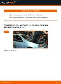 Wie der Wechsel durchführt wird: Zündkerzen Fiat Punto 188 1.2 60 1.2 16V 80 1.3 JTD 16V tauschen