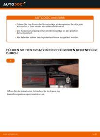 Wie der Wechsel durchführt wird: Bremsbeläge Fiat 500 312 1.2 1.3 D Multijet 1.4 tauschen