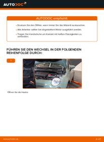 Wie der Wechsel durchführt wird: Ölfilter Fiat 500 312 1.2 1.3 D Multijet 1.4 tauschen