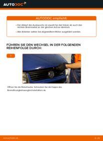 Wie der Wechsel durchführt wird: Bremssattel VW TRANSPORTER IV Bus (70XB, 70XC, 7DB, 7DW) 2.5 TDI 2.4 D 1.9 TD tauschen