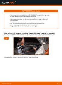 Kuidas välja vahetamist läbi viia: 3.0 TDI quattro Audi A6 4f2 Piduriketas