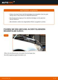 Wie der Wechsel durchführt wird: Bremsbeläge Polo 9n 1.4 16V 1.2 12V 1.4 TDI tauschen