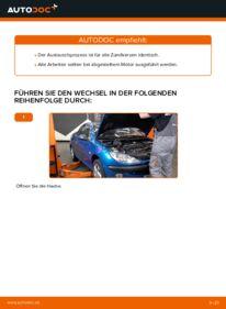 Wie der Wechsel durchführt wird: Zündkerzen Peugeot 206 cc 2d 1.6 16V 2.0 S16 1.6 HDi 110 tauschen