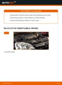 Cum să efectuați înlocuirea: Filtru ulei la 1.2 (F08, F68) Opel Corsa C