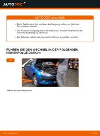 Wie der Wechsel durchführt wird: Stoßdämpfer Peugeot 206 cc 2d 1.6 16V 2.0 S16 1.6 HDi 110 tauschen