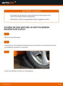 Wie der Wechsel durchführt wird: Querlenker Peugeot 206 cc 2d 1.6 16V 2.0 S16 1.6 HDi 110 tauschen