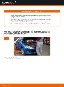 Wie der Wechsel durchführt wird: Federn Peugeot 206 cc 2d 1.6 16V 2.0 S16 1.6 HDi 110 tauschen
