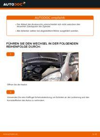 Wie der Wechsel durchführt wird: Zündspule Mercedes W168 A 140 1.4 (168.031, 168.131) A 170 CDI 1.7 (168.009, 168.109) A 160 1.6 (168.033, 168.133) tauschen