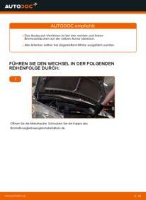 Wie der Wechsel durchführt wird: Bremsschläuche Mercedes W168 A 140 1.4 (168.031, 168.131) A 170 CDI 1.7 (168.009, 168.109) A 160 1.6 (168.033, 168.133) tauschen