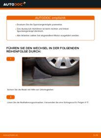 Wie der Wechsel durchführt wird: Spurstangenkopf Toyota Rav4 II 2.0 D 4WD (CLA20_, CLA21_) 2.0 4WD (ACA21, ACA20) 1.8 (ZCA25_, ZCA26_) tauschen