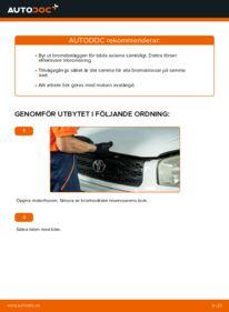 Så byter du Bromsbelägg på 2.0 D 4WD (CLA20_, CLA21_) Toyota Rav4 II