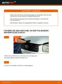 Wie der Wechsel durchführt wird: Bremsbeläge Toyota Rav4 II 2.0 D 4WD (CLA20_, CLA21_) 2.0 4WD (ACA21, ACA20) 1.8 (ZCA25_, ZCA26_) tauschen