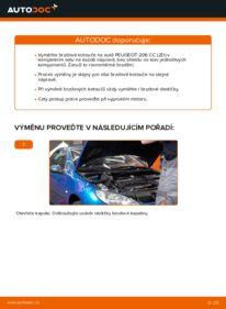 Jak provést výměnu: Brzdovy kotouc na 1.6 16V Peugeot 206 cc 2d