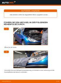 Wie der Wechsel durchführt wird: Keilrippenriemen Peugeot 206 cc 2d 1.6 16V 2.0 S16 1.6 HDi 110 tauschen