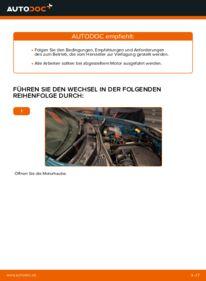 Wie der Wechsel durchführt wird: Luftfilter Renault Kangoo kc01 D 65 1.9 1.4 1.5 dCi tauschen