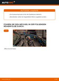 Wie der Wechsel durchführt wird: Zündkerzen Renault Kangoo kc01 D 65 1.9 1.4 1.5 dCi tauschen