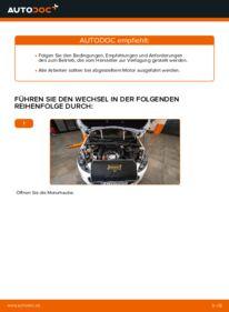 Wie der Wechsel durchführt wird: Luftfilter Peugeot 308 I 1.6 HDi 1.6 16V 2.0 HDi tauschen